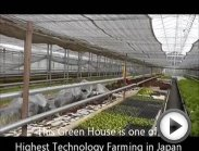 """Chiba Research Institute"" ASIA Health Vegetable Club Limited"